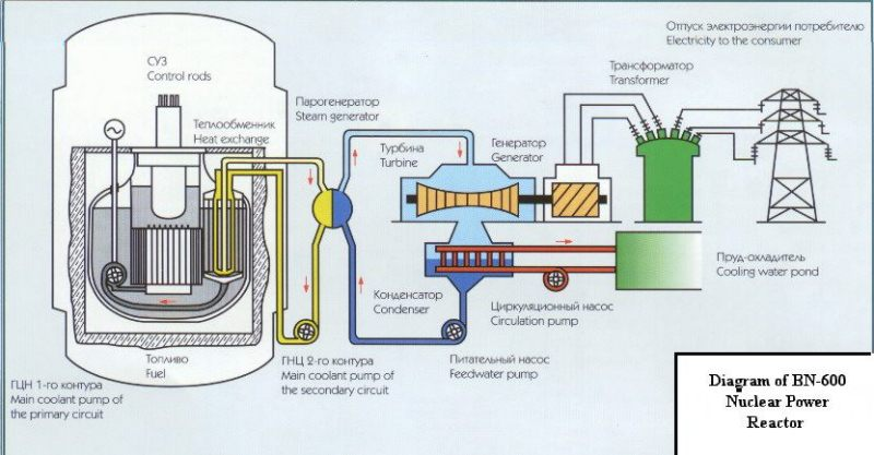 Сверху шахту с реактором перекрывает верхняя биологическая защита.  Компоновка реактора БН-600.